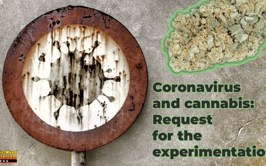 CORONAVIRUS AND CANNABIS: REQUEST FOR EXPERIMENTATION